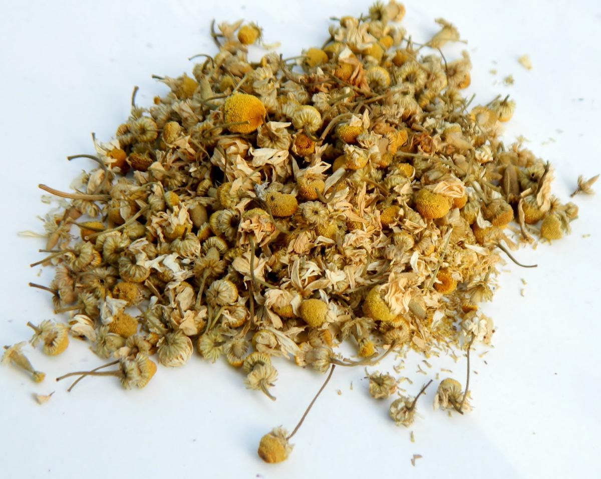 chamomile qRs7fD