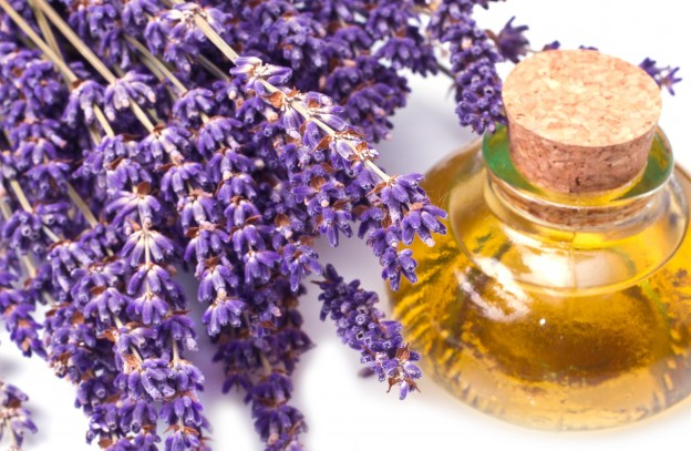 lavender-oil-2-natural-remedies_5B8Q18