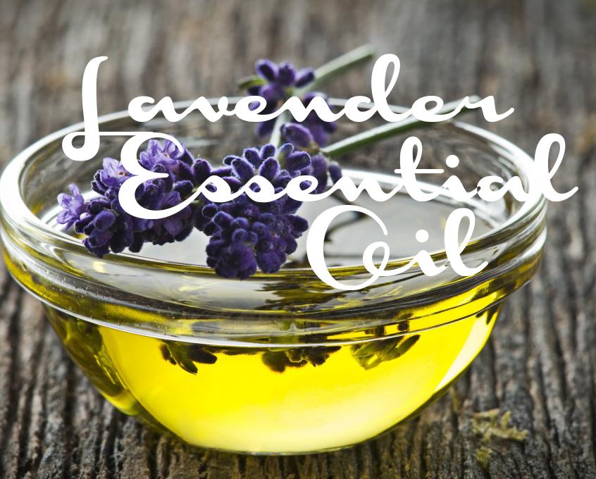 wpid-olympic-lavender-oil_UjVMQS.jpg